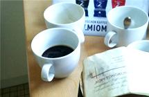 Miomida auf dem Kaffee-Dô in Brüssel