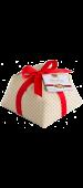 Panettone regalo Zaghis